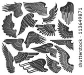 set sketches of wings | Shutterstock .eps vector #113649871