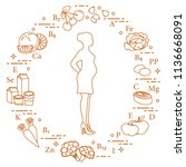 pregnant woman and foods rich... | Shutterstock .eps vector #1136668091