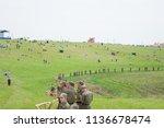 kaliningrad russia  21 august... | Shutterstock . vector #1136678474