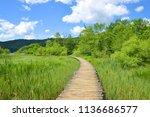 wooden walkway in the plitvice... | Shutterstock . vector #1136686577