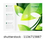 tri fold leaf green design... | Shutterstock .eps vector #1136715887