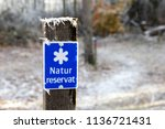 frozen wood surface with a... | Shutterstock . vector #1136721431