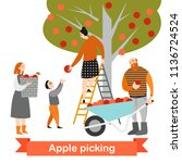 happy family is picking apples...   Shutterstock .eps vector #1136724524
