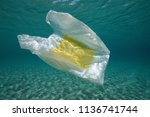 underwater a plastic bag below... | Shutterstock . vector #1136741744