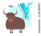 letter y is for yak cartoon...   Shutterstock .eps vector #1136789897