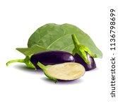fresh  nutritious  tasty... | Shutterstock .eps vector #1136798699