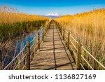 wooden bridge walkway path on...   Shutterstock . vector #1136827169