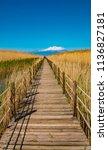 wooden bridge walkway path on...   Shutterstock . vector #1136827181
