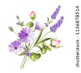label with lavender. bunch of... | Shutterstock .eps vector #1136878514