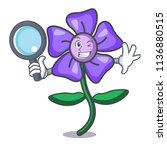 detective periwinkle flower... | Shutterstock .eps vector #1136880515