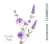 label with lavender and endive. ... | Shutterstock .eps vector #1136882114