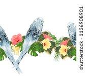 tropical border seamless... | Shutterstock .eps vector #1136908901