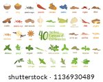 set of 40 different culinary... | Shutterstock .eps vector #1136930489