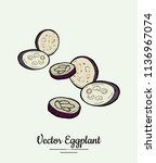 hand drawn vector illustration... | Shutterstock .eps vector #1136967074