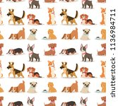 puppy cute playing dogs... | Shutterstock .eps vector #1136984711
