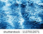 photo of a macro background of... | Shutterstock . vector #1137012071