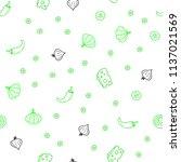 light green vector seamless... | Shutterstock .eps vector #1137021569