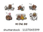 owl and the day of the owl....   Shutterstock .eps vector #1137045599