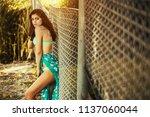 hot sexy brunette in a...   Shutterstock . vector #1137060044