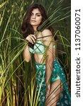 hot sexy brunette in a...   Shutterstock . vector #1137060071