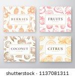 hand drawn coconut  citrus ... | Shutterstock .eps vector #1137081311