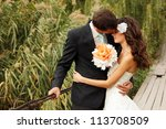 young wedding couple  beautiful ... | Shutterstock . vector #113708509