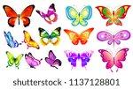 beautiful color butterflies set ...   Shutterstock .eps vector #1137128801