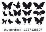 black butterfly  isolated on a... | Shutterstock .eps vector #1137128807
