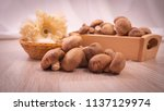 shitake mushroom for cooking | Shutterstock . vector #1137129974