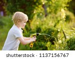 funny little boy playing with... | Shutterstock . vector #1137156767