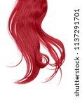 long disheveled red hair ... | Shutterstock . vector #1137291701