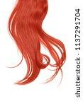 long disheveled red hair ... | Shutterstock . vector #1137291704