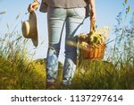 woman with straw hat is holding ... | Shutterstock . vector #1137297614