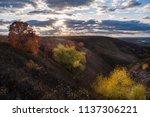 beautiful autumn landscape with ... | Shutterstock . vector #1137306221