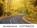 sunny road in autumn forest ... | Shutterstock . vector #1137306224