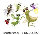 set of cute flying insects... | Shutterstock .eps vector #1137316727