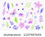 set of watercolor hand drawn... | Shutterstock . vector #1137407654