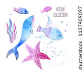 collection of watercolor... | Shutterstock . vector #1137409097