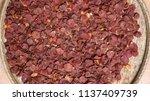 betel nut or areca nut is... | Shutterstock . vector #1137409739