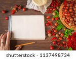 berry summer background with... | Shutterstock . vector #1137498734