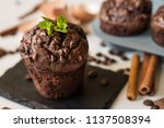 Tasty Chocolate Muffin