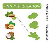 find the right shade nuts. set... | Shutterstock .eps vector #1137519827