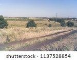beautiful summer field road in... | Shutterstock . vector #1137528854