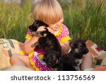 Stock photo little girl playing with puppies 113756569