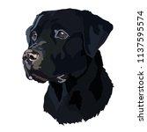 head black labrador vector  | Shutterstock .eps vector #1137595574