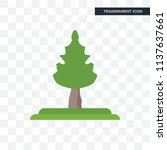 cucumber tree tree vector icon... | Shutterstock .eps vector #1137637661