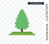 white spruce tree vector icon... | Shutterstock .eps vector #1137637691