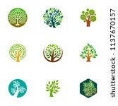 green tree logo icon. natural... | Shutterstock .eps vector #1137670157
