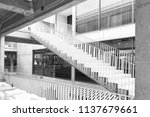 black and white photo of... | Shutterstock . vector #1137679661