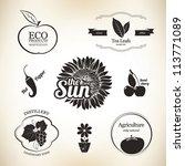 ,agriculture,apple,badge,banner,bio,business,chili pepper,design,eco,elements,emblem,farm,flower pot,food